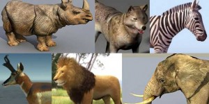 60+ Best Free 3D Animal Models