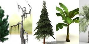 22+ Free 3D Tree Models