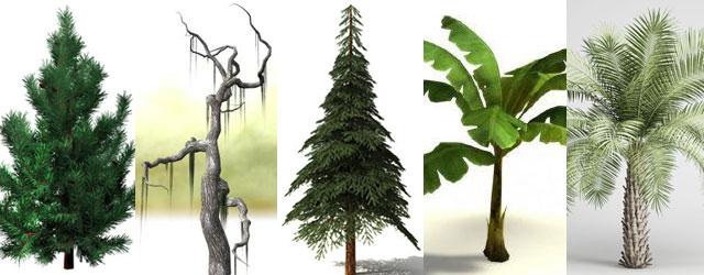 22-free-3d-tree-models