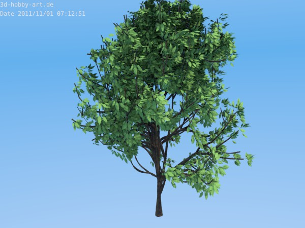 Tree-green-plant-design