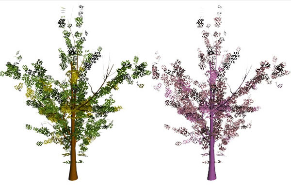 basic-tree-template