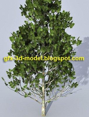 realistic-tree-model