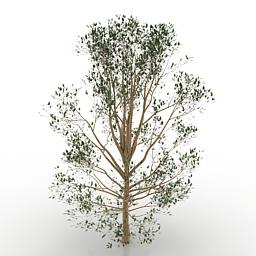 tree-3d-model