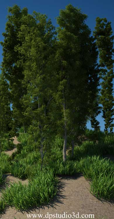 tree-models-dpstudio