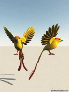 2-Birds-3d-model