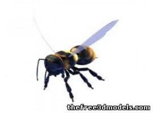 Bee-3d-model