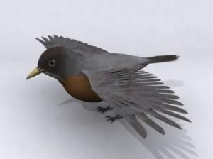 Bird-3D-Model