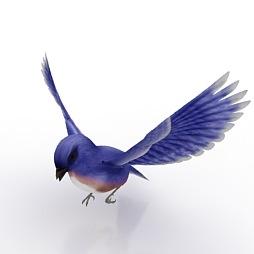 Blue-Bird-3D-Model