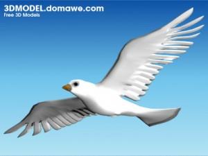 Dove_3D