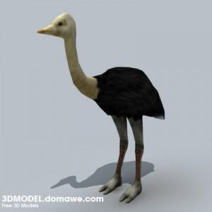 Ostrich-3D-Model