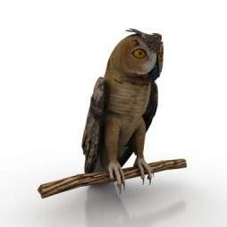 Owl-3D-Model