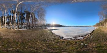 sunny-shore-free