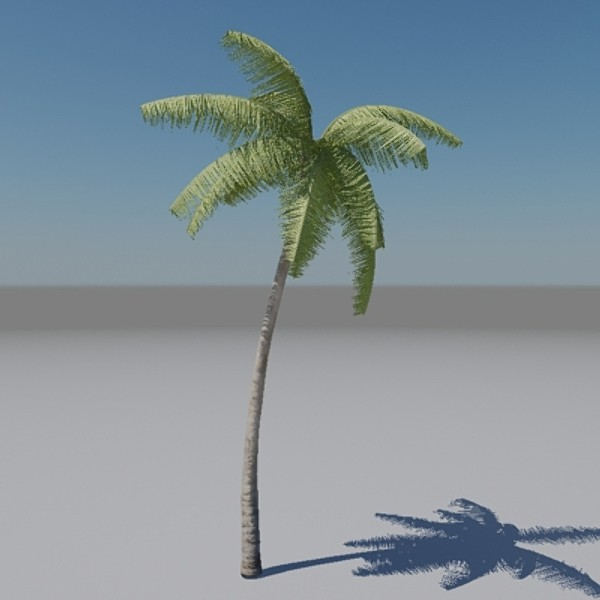 Palm-Tree-3d-Animated-model | RockThe3D