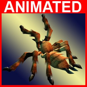 Spider-free-3d-animated-model