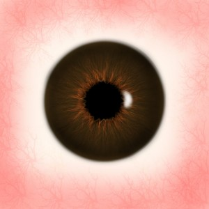 Brown_Eye_Texture