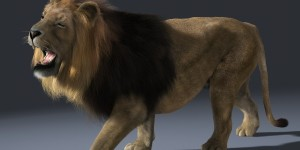 Lion-ANIMATED-FUR-3d-model