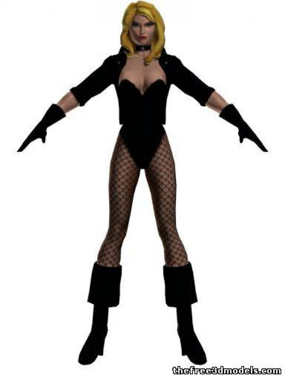 black-canary-free-3d-model-rigged