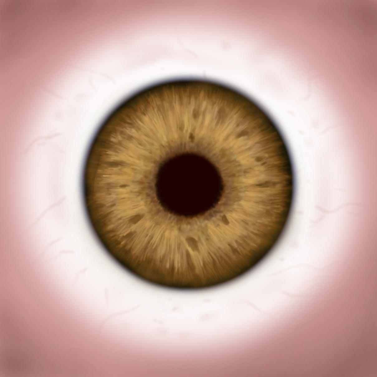 human-eye-texture-005 | RockThe3D