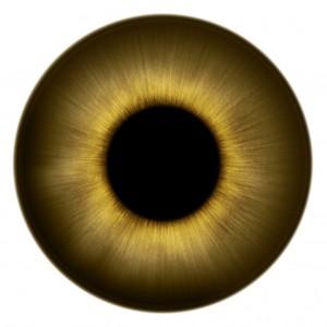 human-eye-texture-013