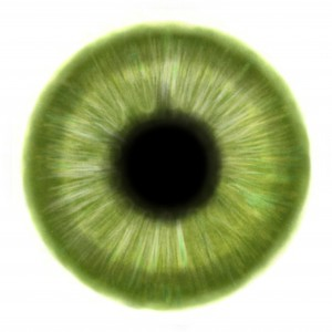 iris_green_eye