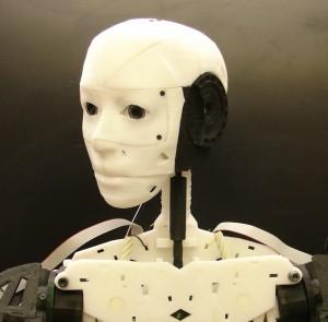 InMoov Open Source Robot 3d printed