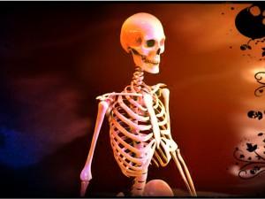 Human Skeleton 3d printed